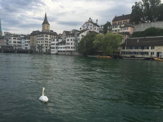 Zurich town